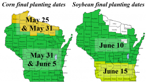 Can I Use Corn or Soybeans as a Cover Crop on Prevented Plant Acres