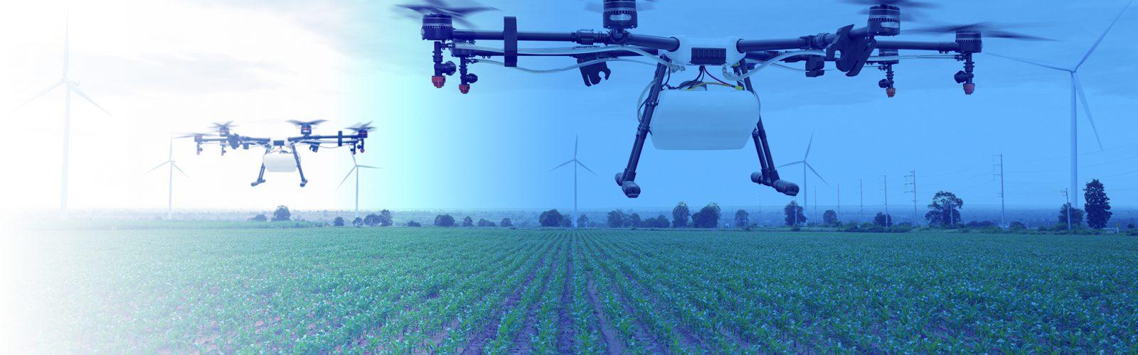 24e1b68550504 Economics of Agriculture – Agricultural   Applied Economics – UW–Madison